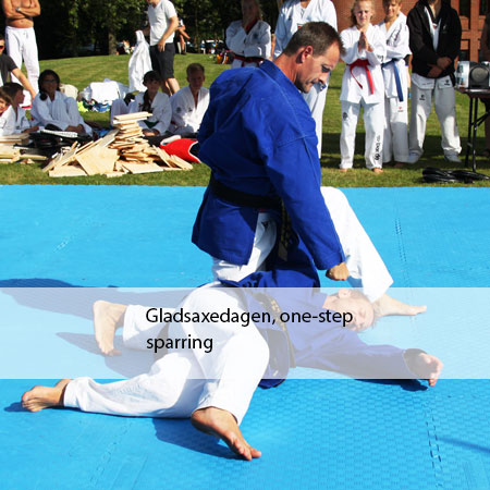 Gladsaxedagen, one-step sparring